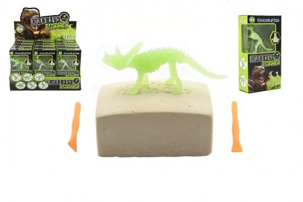 Dinosaurus svítící ve tmě+fosilie plast asst 12 druhů v krabičce 10x18x4cm 12ks v boxu