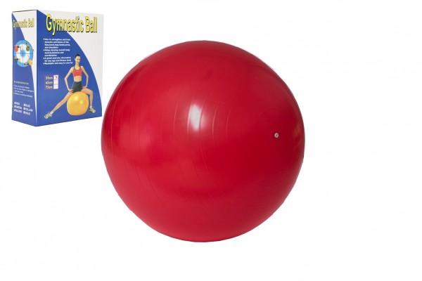 Gymnastický míč relaxační 55cm v krabici