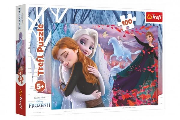 Puzzle Navždy spolu Ledové království II/Frozen II 100 dílků 41x27,5cm v krabici 29x19x4cm