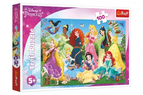 Puzzle Půvabné princezny/Disney 100 dílků 41x27,5cm v krabici 29x19x4cm
