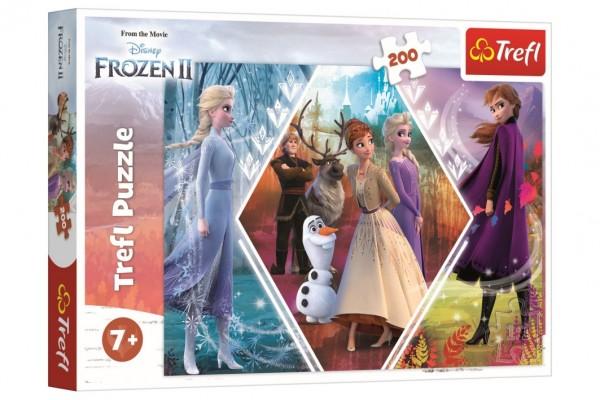 Puzzle Ledové království II/Frozen II 48x34cm 200 dílků v krabici 33x23x4cm