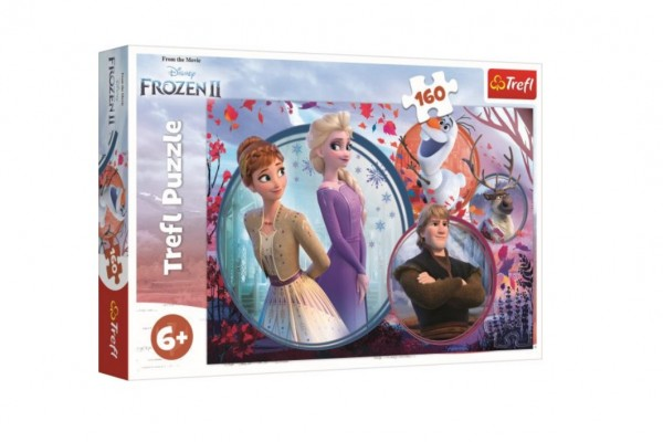 Puzzle Ledové království II/Frozen II 160 dílků 41x27,5cm v krabici 29x19x4cm