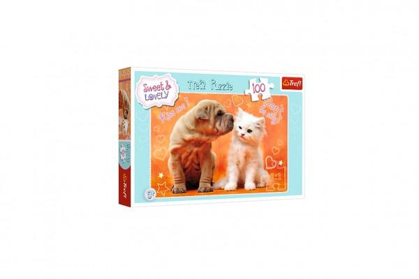 Puzzle Sweet and lovely/Polibky 100 dílků 40,8x27,6cm v krabici 29x19x4cm