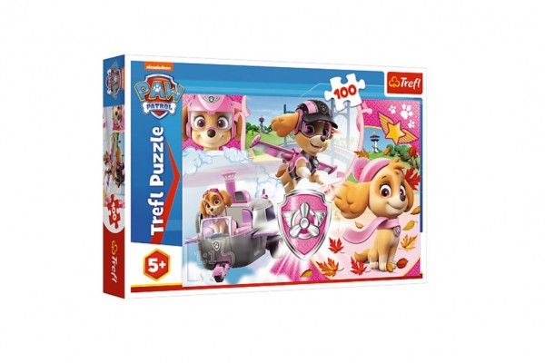 Puzzle Paw Patrol/Tlapková patrola Skye v akci 41x27,5cm 100 dílků v krabici 29x19x4cm