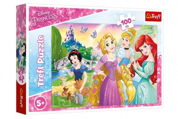 Puzzle Disney princezny - Sen o princezně 100 dílků 41x27,5cm v krabici 29x19x4cm
