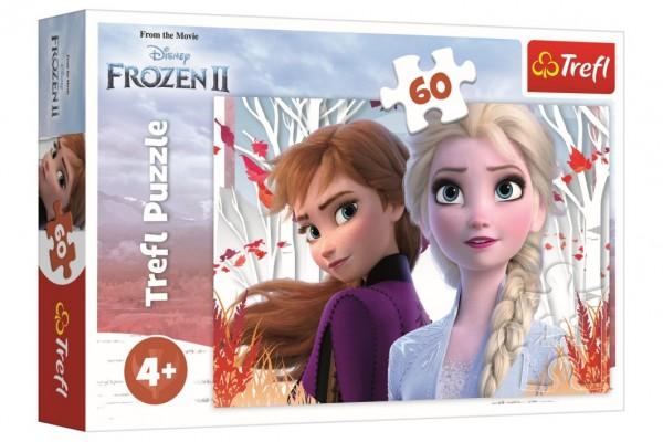 Puzzle Ledové království II/Frozen II 60 dílků 33x22cm v krabici 21x14x4cm